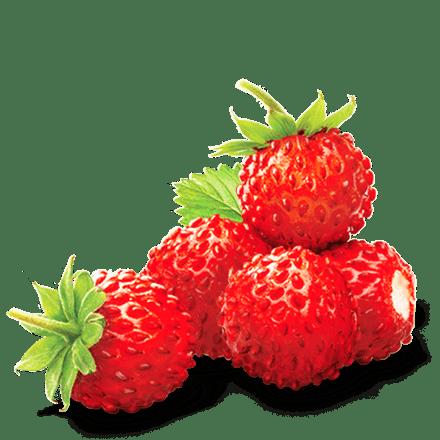Mamie Nova - Ingrédient Cœur de liégeois aux fruits Fraise des Bois