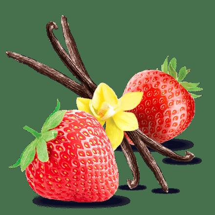 Mamie Nova - Ingrédient Crème & Fruit Fraise Vanille