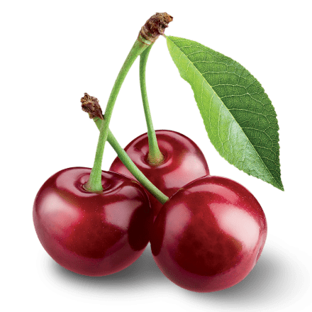 Mamie Nova - Ingrédient Yaourt Gourmand® aux fruits Cerise Griotte