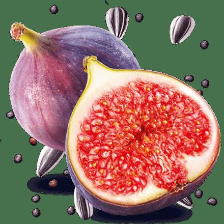 Mamie Nova - Ingrédient Yaourt Gourmand® aux fruits Figue Tournesol Pavot