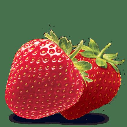 Mamie Nova - Ingrédient Yaourt Gourmand® aux fruits Fraise