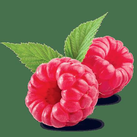 Mamie Nova - Ingrédient Yaourt Gourmand® aux fruits Framboise