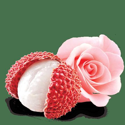 Mamie Nova - Ingrédient Yaourt Gourmand® aux fruits Litchi & Rose