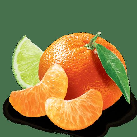Mamie Nova - Ingrédient Yaourt Gourmand® aux fruits Mandarine Citron Vert