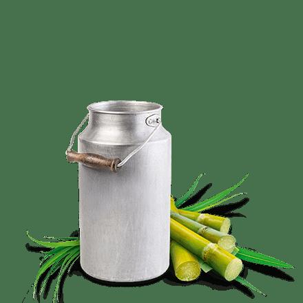 Mamie Nova - Ingrédient Gamme Quotidienne Fromage Blanc Sucre de Canne Roux