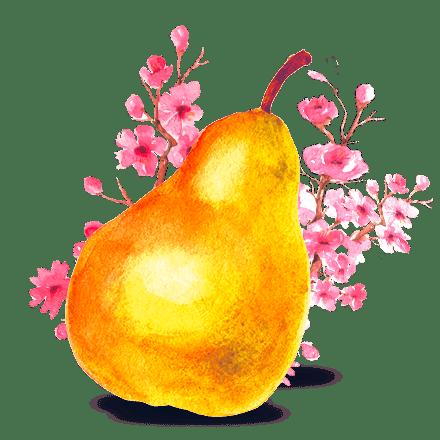Mamie Nova - Ingrédient Fleur de Yaourt Poire saveur Sakura